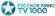 Логотип канала ТВ 1000 Русское кино